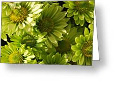 Real Green Flowers Greeting Card