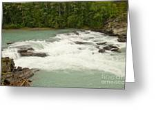 Rearguard Falls Of The Fraser River Greeting Card