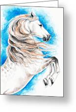 Rearing Andalusian Horse Greeting Card