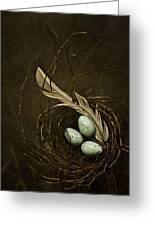 Rebirth Greeting Card by Amy Weiss