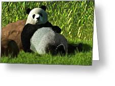 Reclining Panda Greeting Card