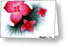 Red Greeting Card by Allyson Andrewz