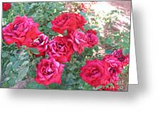 Red And Pink Roses Greeting Card