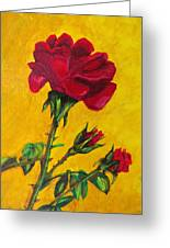 Red And Small Greeting Card