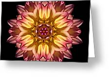 Red And Yellow Dahlia Iv Flower Mandala Greeting Card