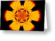 Red And Yellow Marigold II Flower Mandala Greeting Card