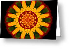 Red And Yellow Marigold V Flower Mandala Greeting Card
