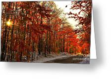 Red Autumn Road In Snow Greeting Card