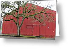 Red Barn And Green Tree In Dundee Hills Oregon Wine Country Greeting Card