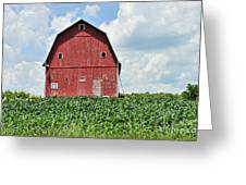 Red Barn And New Corn Greeting Card
