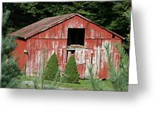 Red Barn Two Trees Greeting Card by Paulette Maffucci