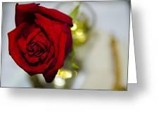 Red Beauty II Greeting Card