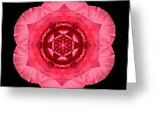 Red Begonia I Flower Mandala Greeting Card