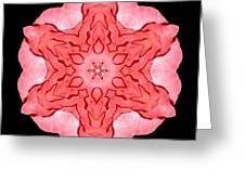 Red Begonia II Flower Mandala Greeting Card