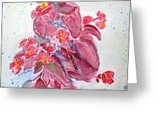Red Begonias Greeting Card