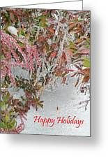 Red Berries Over Snow Greeting Card