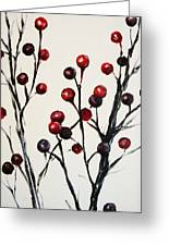 Red Berry Study Greeting Card