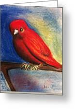 Red Bird Greeting Card by Anais DelaVega