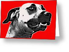 Red Blooded Scooby Dog Greeting Card