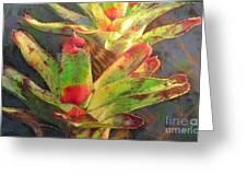 Red Bromeliad Greeting Card