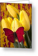 Red Butterfly Resting On Tulips Greeting Card