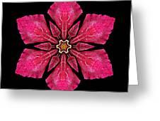 Red Clematis I Flower Mandala Greeting Card