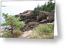 Red Cliffs Of Acadia  Greeting Card