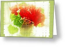 Red Cyclamen On Windowsill Greeting Card