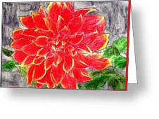 Red Dalia  Greeting Card