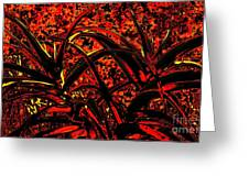 Red Dancers Greeting Card