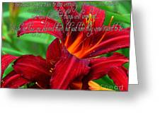 Red Day Lily And Quote Greeting Card