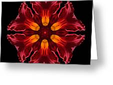 Red Daylily II Flower Mandala Greeting Card