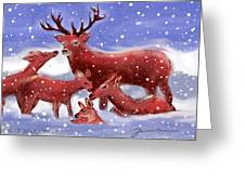 Red Deer Family Greeting Card
