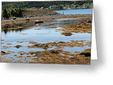 Red Flat At Low Tide Greeting Card