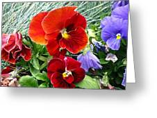 Red Flower In Grass Greeting Card
