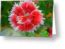 Red Flower Macro Greeting Card