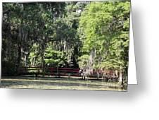 Red Footbridge Over Green Water Greeting Card