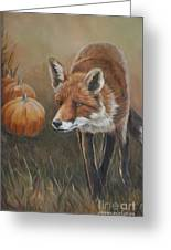 Red Fox With Pumpkins Greeting Card