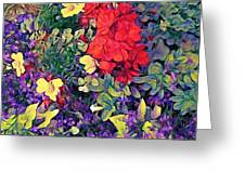 Red Geranium With Yellow And Purple Flowers - Horizontal Greeting Card