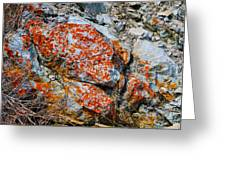 Red Growth Rock Greeting Card