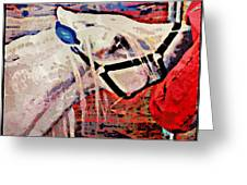 Red Hay Bag Greeting Card