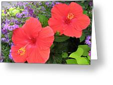 Red Hibiscus And Purple Blossoms Greeting Card