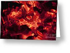 Red Hot Love Greeting Card