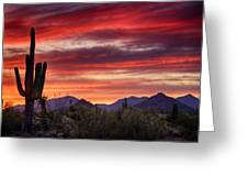 Red Hot Sonoran Sunset Greeting Card