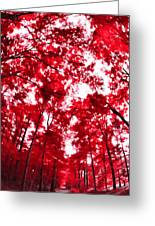 Red I Greeting Card