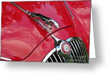 Red Jaguar 3.8 Greeting Card