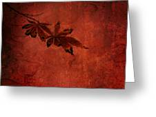 Red Japanese Maple On Red Greeting Card