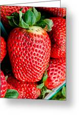 Red Juicy Delicious California Strawberry Greeting Card