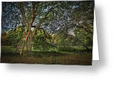 Red Ladder And Oak Greeting Card