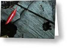 Red Leaf On Cut Wood Greeting Card